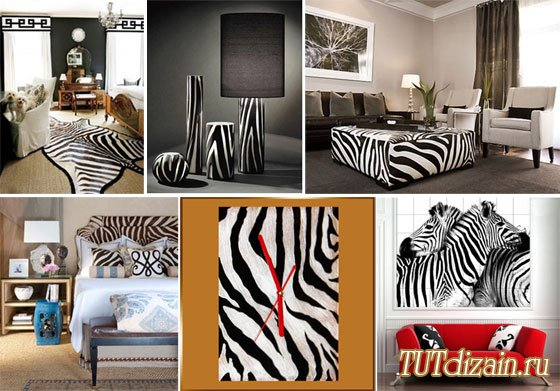 Interior living room carpet zebra print upholstery fabric design